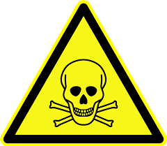 logo intox